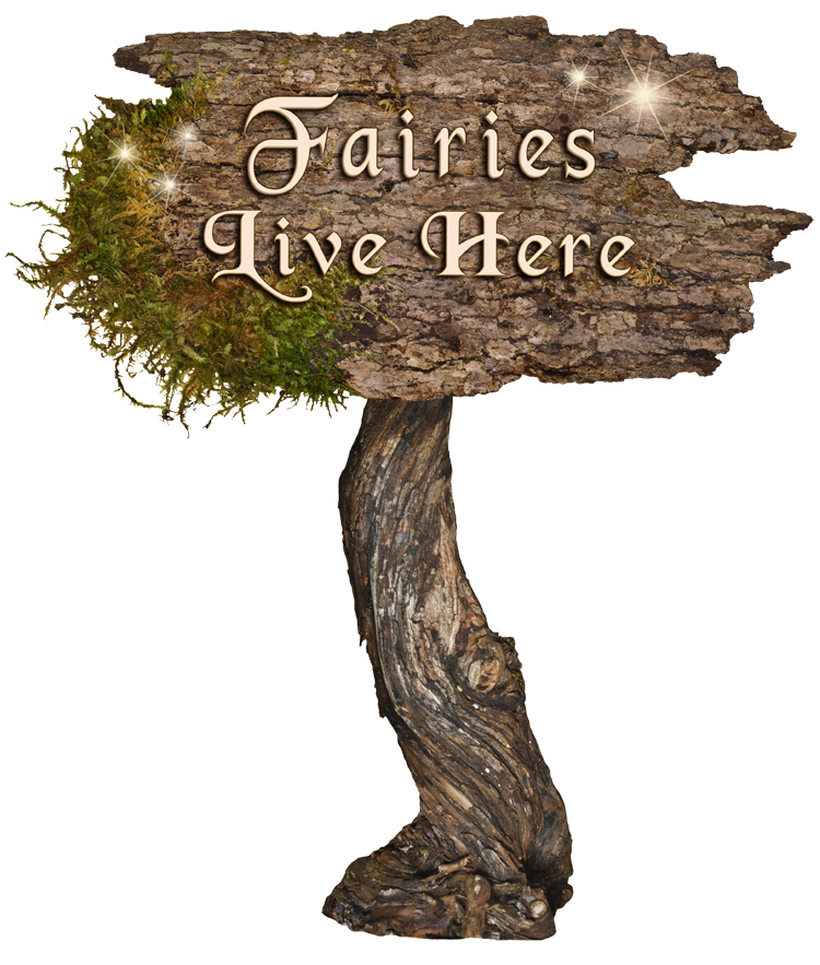 Fairies Live Here